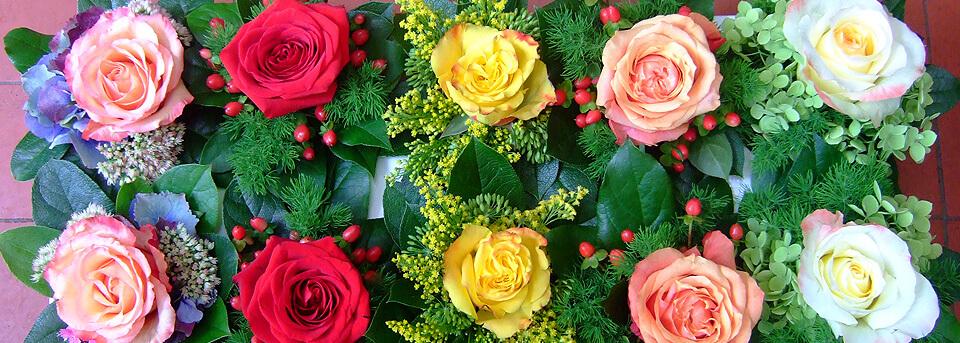 Blumen wind blumenladen köln marienburg